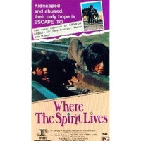 a review of the movie where the spirit lives